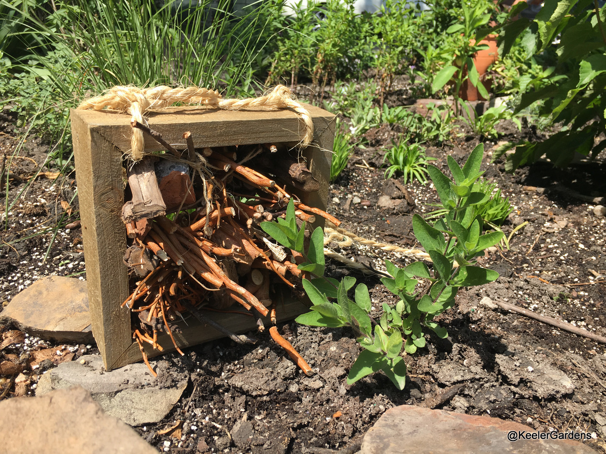 In the foreground is a handmade insect hotel, which is a square, untreated, wooden frame that is filled with bundles of dry branches, dry twigs, and bits of wood. The insect hotel is designed to be hung, with a rope strap on the top, but it is resting on the ground in the Keeler Gardens' pollinator habitat for this picture.