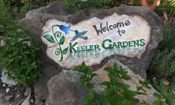 "A rock slab stands upright, braced by other rocks and surrounded by foliage in the Keeler Gardens pollinator habitat. The slab is painted partially white, and text painted on it reads ""Welcome to,"" in black, and ""Keeler Gardens"" in green. There is also a painting of a blue and green hummingbird hovering next to a blue flower to the left of the words, which is the Keeler Gardens logo."